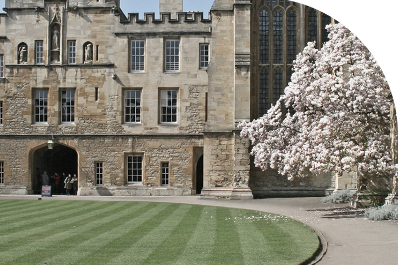One of the quads at New College, with a blossoming cherry tree